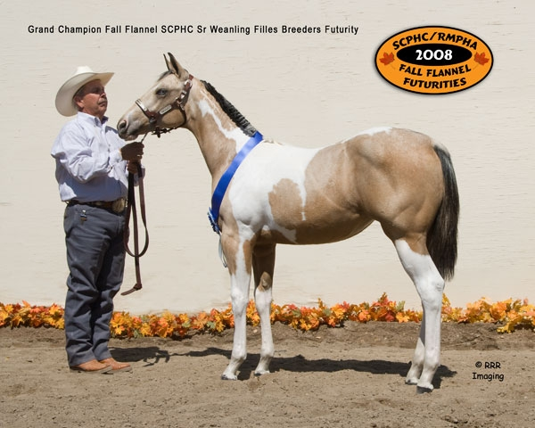/Info_Pages/I__23-222201243923PM__2008_Grand_Champion_Filly.jpg